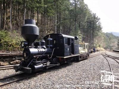 赤沢森林休養林|赤沢森林鉄道の電車と森林鉄道記念館|木曽郡上松町