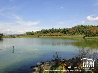 荒神山公園|ため池百選に選定されたたつの池のある公園|辰野町樋口