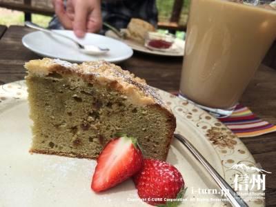 紅茶とお菓子のお店 木のすず|ゆったりとした時間が流れるティールーム|伊那市高遠