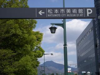 松本市美術館のチューリップ|松本市