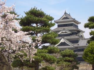 松と桜越しの松本城