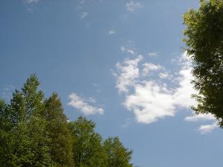 晴れた日はいい感じの公園です