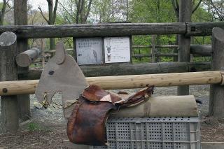 乗馬体験できる鞍があります