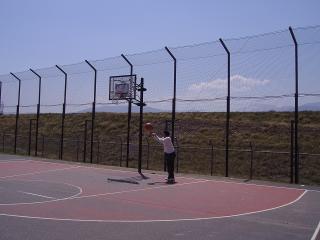 ストリートバスケット