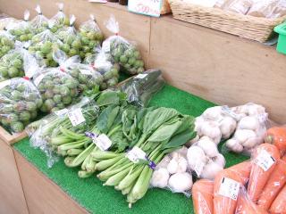 ハーブセンター 野菜