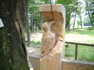 看板にきつつきの彫刻