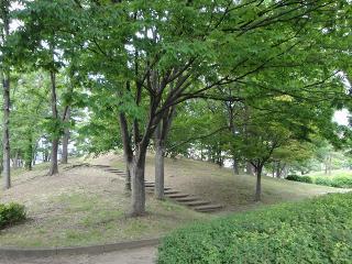 緑ヶ丘公園の緑