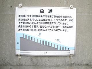 釜口水門の魚道説明書き