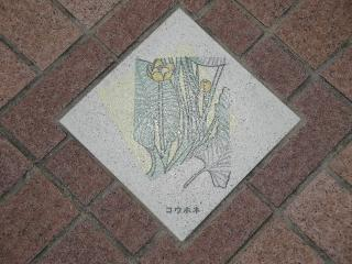 釜口水門の上、歩道にあるコウホネの飾り