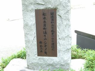 大名町通りのシナノキ碑