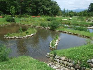 あづみの公園 池