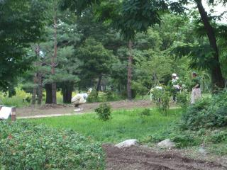 あづみの公園の管理