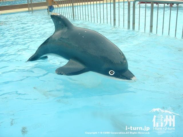 乳児プールのイルカ