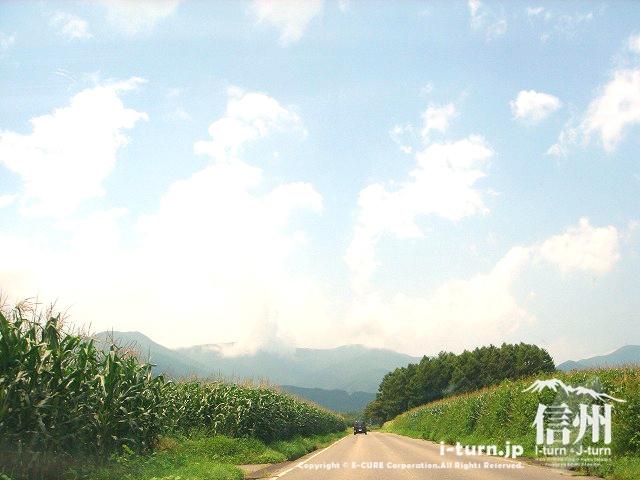 鳩吹公園は西山へ向かいます