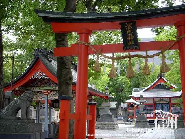 深志神社の鳥居横の狛犬(こまいぬ)