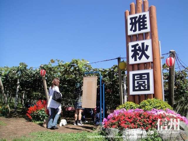 雅秋園のシンボルタワー