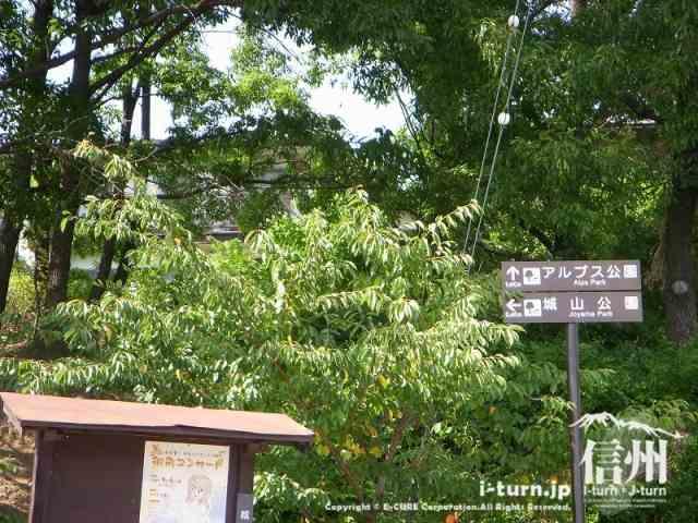 アルプス公園と城山公園を案内する標識があります。