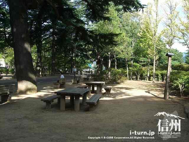 並木道の横にはベンチやテーブル