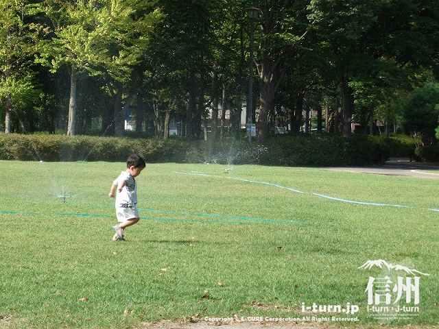 芝生公園で遊ぶ子供