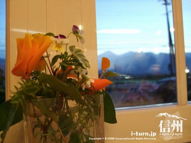 ピッコラーナ 窓辺の花