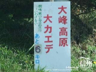 大峰高原大カエデ あと6キロ