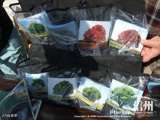 大峰高原中カエデ 200円以上募金をすると写真をプレゼント