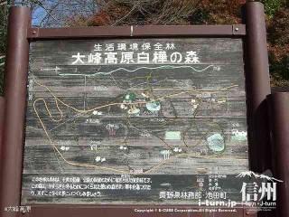 大峰高原白樺の森の案内板