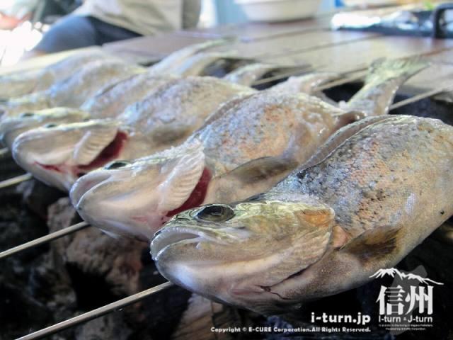 釣りとお食事のできる|大明神釣堀センター|伊那市高遠