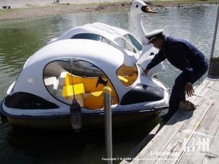 パンダに乗船