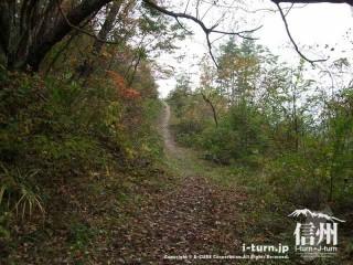 旧国鉄篠ノ井線廃線敷 山道を登ります