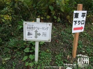 旧国鉄篠ノ井線廃線敷 東平の下り口