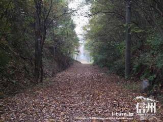 旧国鉄篠ノ井線廃線敷 歩いてきた道を振り返る