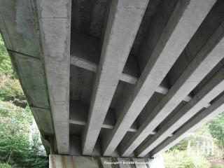 旧国鉄篠ノ井線廃線敷 橋の下
