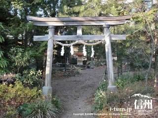 木の鳥居とその奥に八坂神社