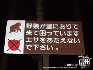 「サルにエサを与えないで」の立札