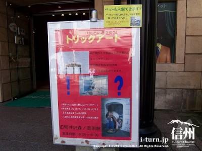 旧軽井沢森の美術館 トリックアート案内2