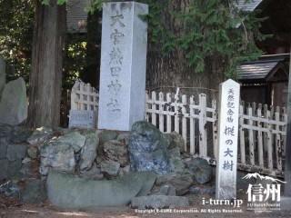 神社名の石柱と樅の大樹の案内