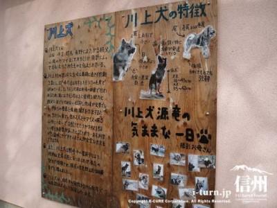 源竜ハウスの壁にはコンパネに手書きで書かれた紹介