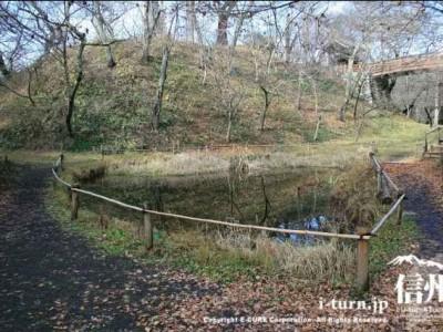 閑散とした池
