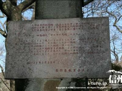 長野県天然記念物指定のシンボル説明書き