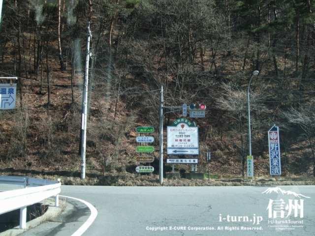 福寿草まつり|県下一の福寿草群生地|松本市四賀