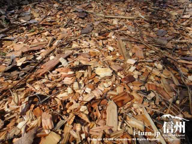 地面は木のチップ
