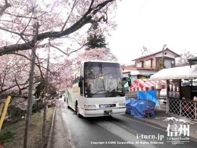 大型バスもどんどん通ります