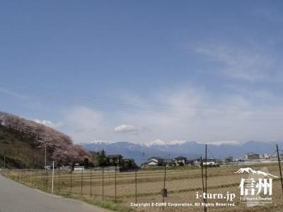 弘法山付近の風景