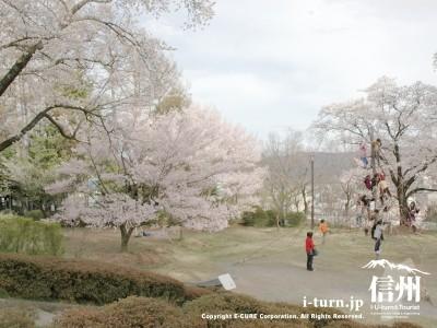 春の遊具の風景