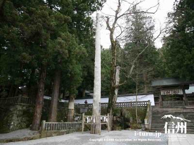 本宮一之御柱 全体 2004年建て御柱