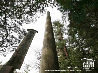 春宮三之御柱 アップ 2004年建て御柱