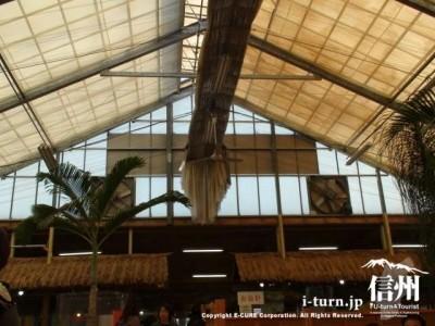 天井がビニールハウス