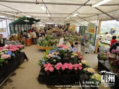 花の直売所