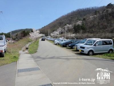 駐車場に停めきれない車
